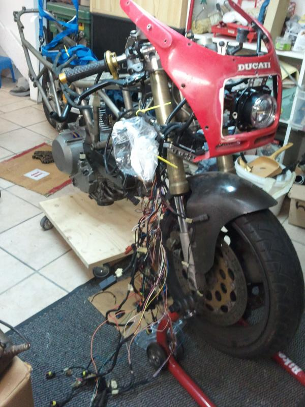ducati-front-rot.jpg.46a4ded3946df00eb5c