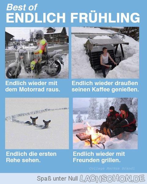 150425_EndlichFruehling_1.jpg